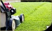 amenagement-paysagiste-quebec-coupe-pelouse